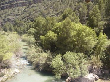 Vista desde la Presa de la Mulata