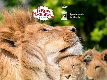 19th March San José Bank Holiday offer at Terra Natura Murcia