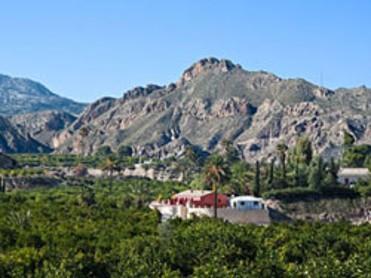Panorámica -  La Joya del Valle de Ricote