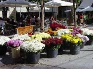 Saturday 29th October ENGLISH language Halloween tour of Murcia City