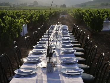 Enoturismo y Gastronomía