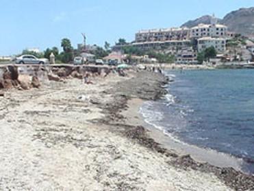 Playa de la Cola
