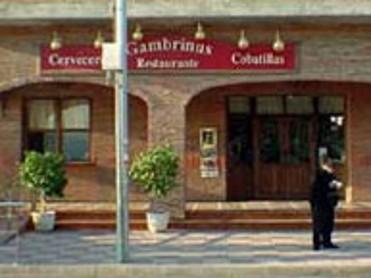 GAMBRINUS COBATILLAS