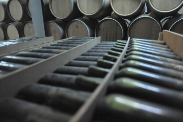 23rd February free guided tour of Cehegín bodega and wine school
