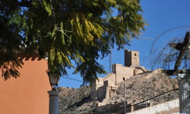 19th to 25th February What's on in Alhama de Murcia