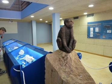 Centro de Interpretación del Yacimiento Paleontológico de la Sierra de Quibas