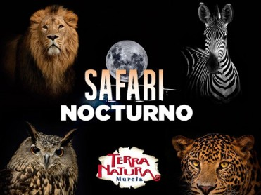 Night-time summer safari tours of Terra Natura Murcia wildlife park