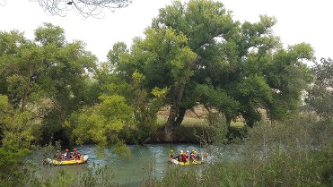 Rafting ;)
